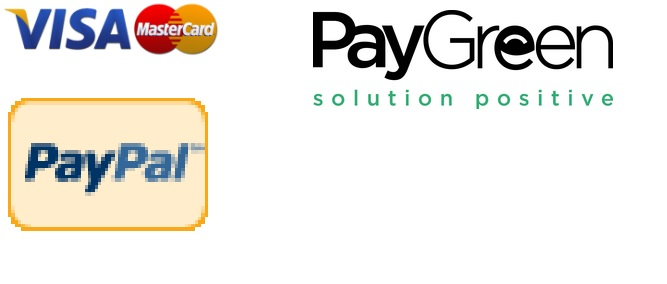 Solutions de paiement